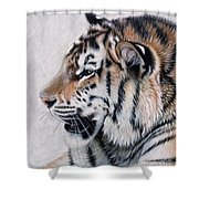 Amur Shower Curtain