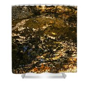An Abstract Fall Reflection Shower Curtain