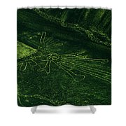 An Aerial View Of The Nazca Lines. They Shower Curtain