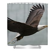 An American Bald Eagle Soaring Shower Curtain