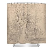 An Ancient Tree With Figures In A Landscape Shower Curtain