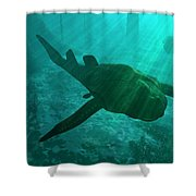 An Armored Bothriolepis Glides Shower Curtain by Walter Myers