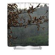 An Autumn Day Shower Curtain
