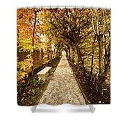An Autumn Path Shower Curtain