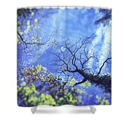 An Early Autum Day Shower Curtain