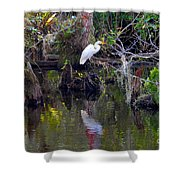 An Egrets World Shower Curtain