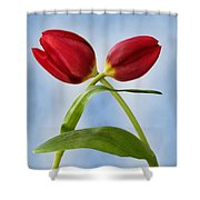 An Embrace Of Tulips Shower Curtain