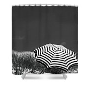 An English Summer Shower Curtain
