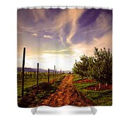 An Evening By The Orchard Shower Curtain