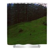 An Evening In Woods Shower Curtain