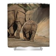 An Indian Rhinoceros And Her Baby Shower Curtain