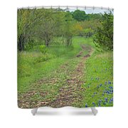 An Inviting Path Shower Curtain