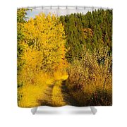 An October Path   Shower Curtain