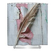 An Old Door And Feather Shower Curtain
