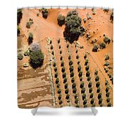 An Olive Grove Between The Succulent Shower Curtain