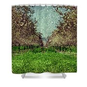 An Orchard In Blossom In The Eila Valley Shower Curtain