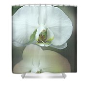An Orchid For You Shower Curtain