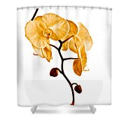 An Orchid's Perfume Shower Curtain