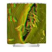 Anaglyph Of Infected Lettuce Leaf Shower Curtain
