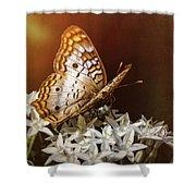Anartia Jatrophae - White Peacock Butterfly  Shower Curtain
