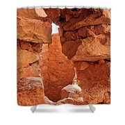 Anasazi Cliff Dwellings #8 Shower Curtain