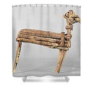 Anasazi Split-twig Figure Shower Curtain