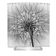 Anatomy Of A Weed Monochrome Shower Curtain