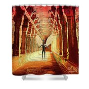 Ancient Alien Angel Shower Curtain