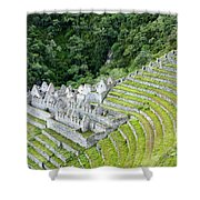 Ancient Architecture Shower Curtain