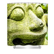 Ancient Artifacts 2 Shower Curtain