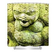 Ancient Artifacts 4 Shower Curtain