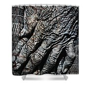 Ancient Hands Shower Curtain by Skip Nall