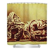 Ancient History Shower Curtain