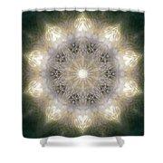 Ancient Light X Shower Curtain