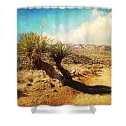 Parry Nolina Shower Curtain