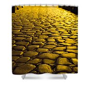 Ancient Roadway Shower Curtain