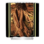 Ancient Roots Of Greece Shower Curtain