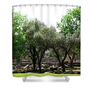 Ancient Ruins Temple Grounds 2 Shower Curtain