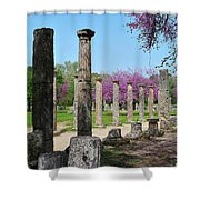 Ancient Ruins Tree By Columns Shower Curtain