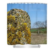 Ancient Stone Shower Curtain