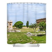 Ancient Temple At Famous Paestum Archaeological, Italy Shower Curtain