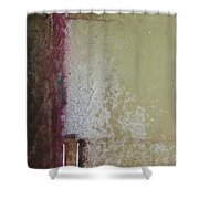 Ancient Wall Shower Curtain