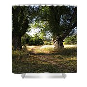 Ancient Willows #1 Shower Curtain