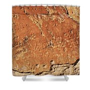 Ancient Writings  Shower Curtain