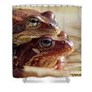And Then I Found You. European Common Brown Frog Shower Curtain