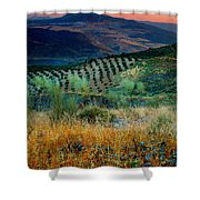 Andalucian Landscape  Shower Curtain