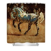 Andalusian Dance I Shower Curtain