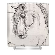 Andalusian Horse Portrait 2015 12 08 Shower Curtain