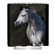 Andalusian Portrait Shower Curtain