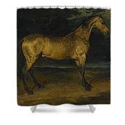 Andre Theodore Gericault   A Horse Frightened By Lightning Shower Curtain